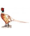 Beeld fazant 52 cm